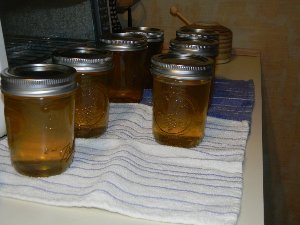 Pear Jelly (1/2)